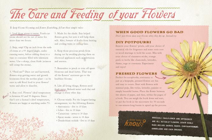 Central Market Floral Guide